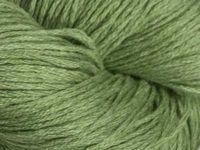 Filace DenimLace-Lichene