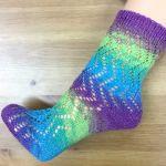 Socke *Hydrangea*