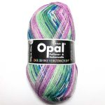Opal Sweet and Spicy - pflaume